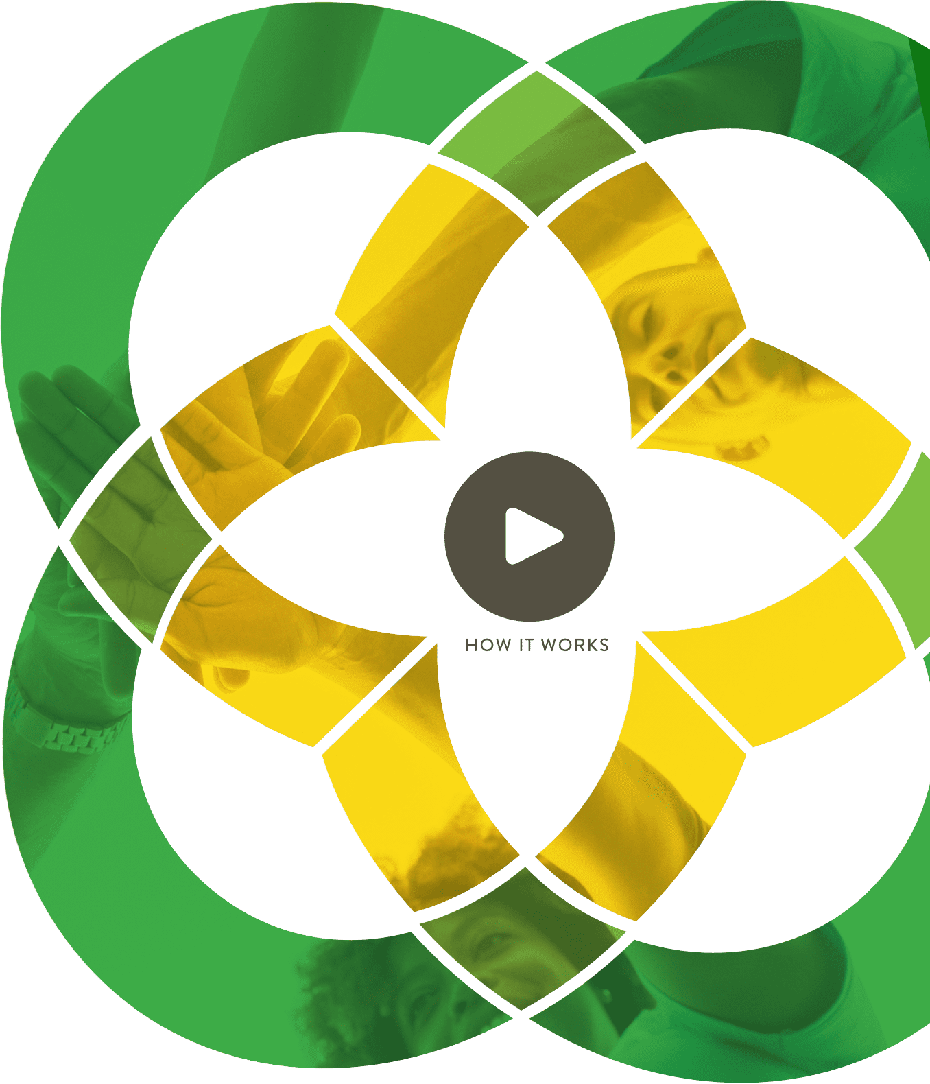 community foundation flower logo with a video play button inside
